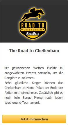 road to cheltenham racebets